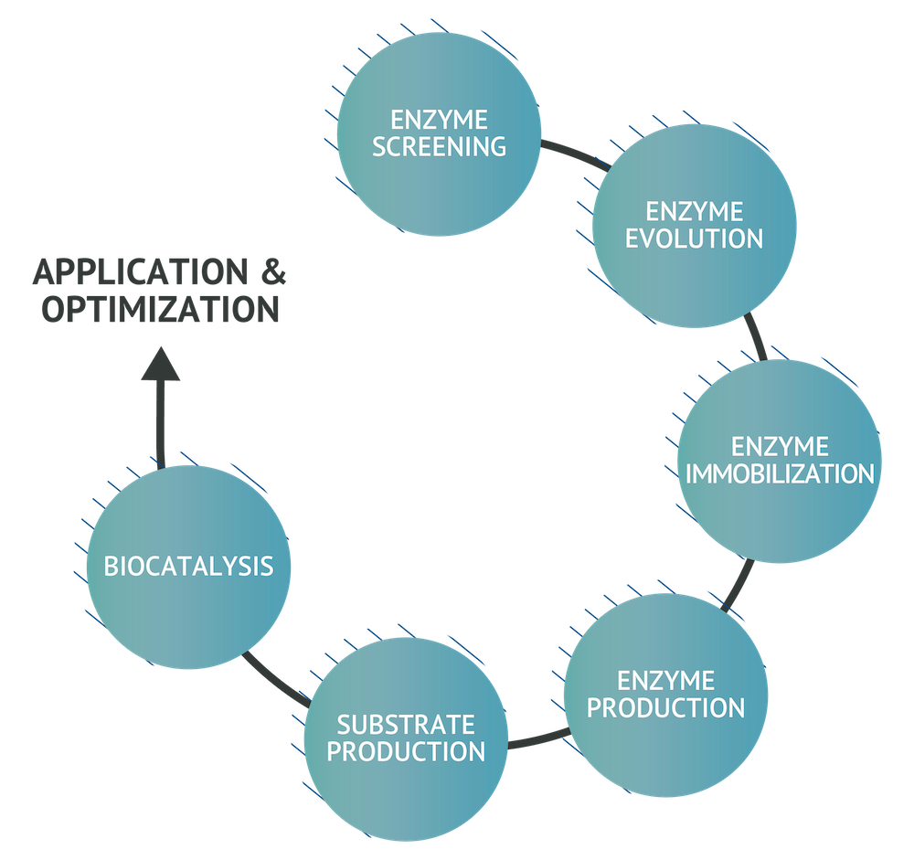 Asymchem Enzymes Application and Opitmization Chart_APIs Intermediates Enzymes Chart